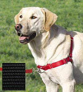 EASY WALK HARNESS Dog Premier/Gentle Leader No Pull