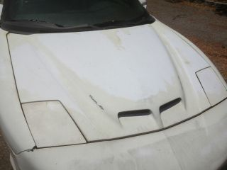 RAM AIR HOOD WS6 SLP FIREBIRD TRANS AM OEM RAM AIR HOOD NO DAMAGE SAND