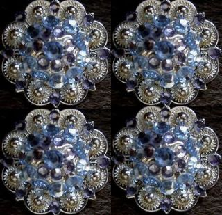 BERRY CRYSTALS BLING CONCHOS HORSE SADDLE HEADSTALL PURPLE TACK C18