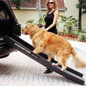 telescoping dog ramp in Ramps & Stairs