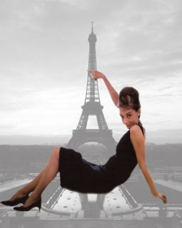 Audrey Hepburn In Paris Canvas Art 16 x 20