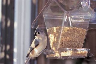 aspects window cafe seed window bird feeder 155 time left