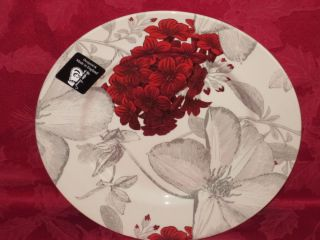 ANDREW TANNER ROYAL STAFFORD FLORAL CLEMATIS RED GRAY SALAD PLATES SET