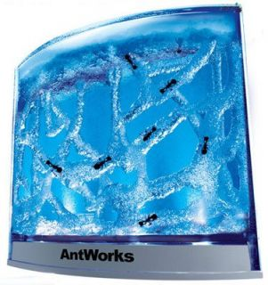 Fascinations AntWorks Illuminated Blue Ant Farm Habitat City
