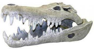 Blue Ribbon Nile Crocodile Skull Mini Aquarium Decor