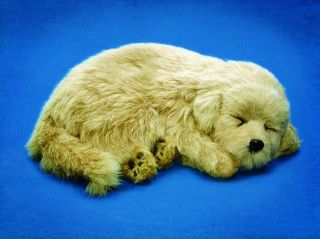11 GOLDEN RETRIEVER Dog Puppy Stuffed Sleeping Breathing Toy