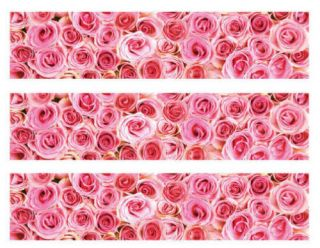 Pink Roses Edible Cake Border Side Decoration Strips NW