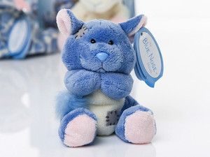 My Blue Nose Friends Snugs Chinchilla Soft Plush Toy Collectable 76 S