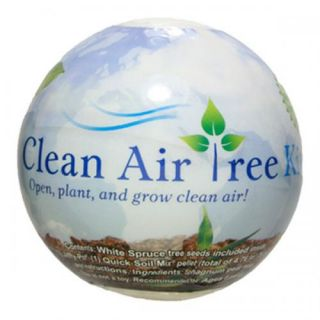Clean Air Tree Kit 3 Pack Contains White Spruce Seeds Jiffy Pot Soil