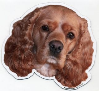 cocker spaniel dog magnet great magnets for proud dog owners or anyone