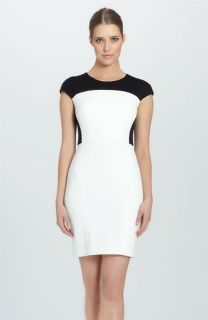 Cynthia Steffe Kody Cap Sleeve Colorblock Sheath Dress