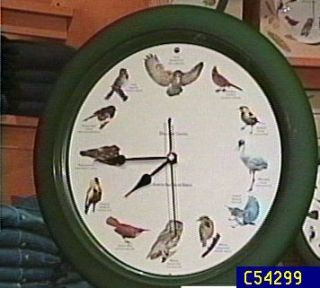 Discovery Channel North American Bird Clock —