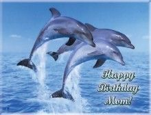 Dolphins Edible Cake Icing Image Birthday Custom Party