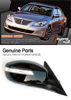 Mirror Repeater Assy Full Kit 1 Piece (fit Hyundai Genesis Sedan 2011