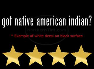Indian Native American Feather Beads Wall Art Vinyl Decal Decals