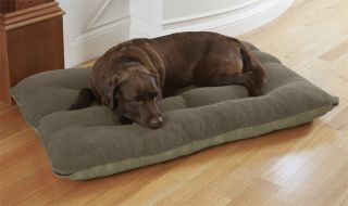 Memory Foam Futon Dog Bed / X large Dogs 100+ Lbs., Olive,