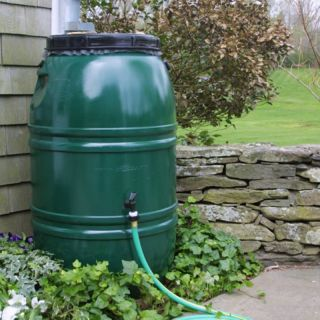 Great American Painted Rain Barrel   PAINTEDRB   EARTHBRW
