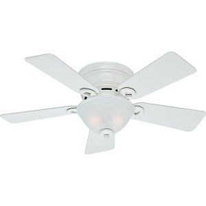 Hunter HUF 51022 Conroy Small Room Ceiling Fan with light