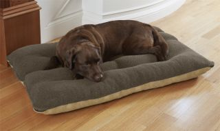 Memory Foam Futon Dog Bed / X large Dogs 100+ Lbs., Rawhide,